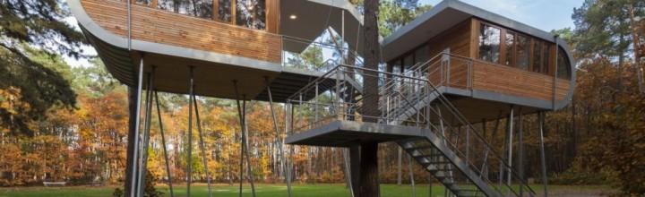Casa del árbol 2