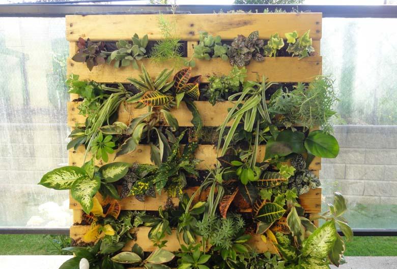 C mo hacer su propio jard n vertical para la casa bern s - Construir jardin vertical ...